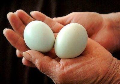 Ако започнете да ядете по 2 яйца на ден, тези 9 промени ще се случат с тялото ви