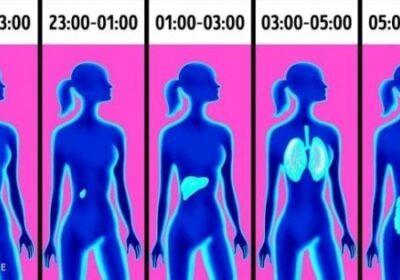 Защо се събуждате по едно и също време всяка вечер и какво значи това