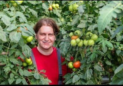 От дядо ми ги знам: Хитрините за засаждане на домати – растат над 2 метра, сочни, едри и ароматни