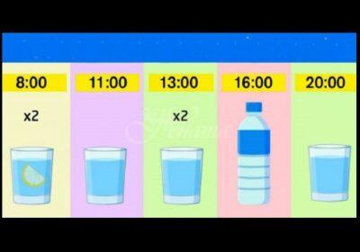 График за отслабване: яжте каквото искате и пийте вода до час. Резултатът е минус 15% мазнини –